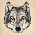 Dogus U.
